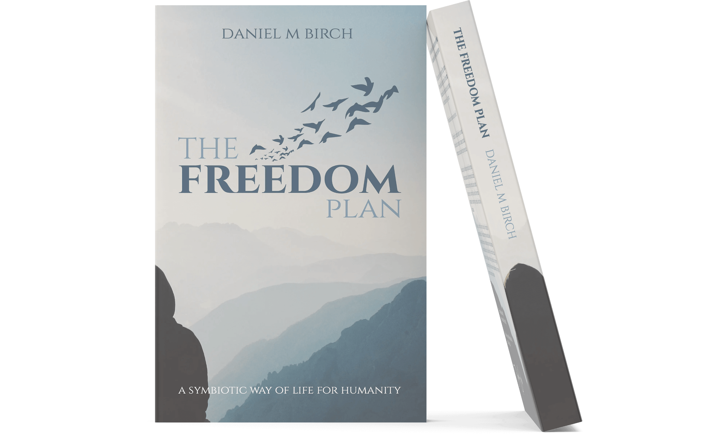 The Freedom Plan Book