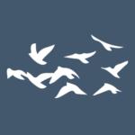 Group logo of San Francisco 🇺🇸